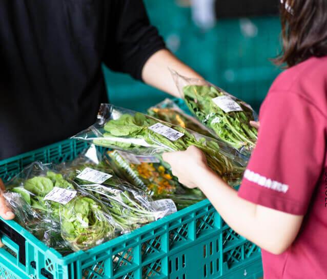 「農産物の安全性と品質を確かめて、」イメージ画像